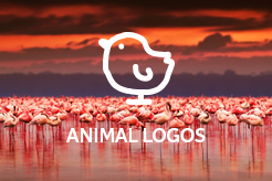 LogoMood Animal Logos for sale