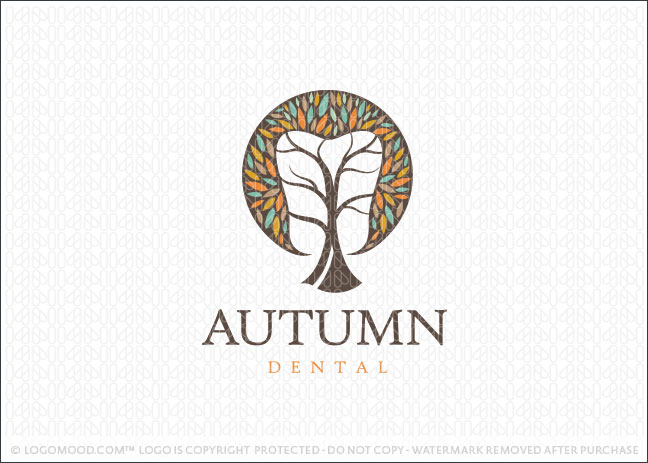 Autumn Tooth Dental Tree Logo For Sale