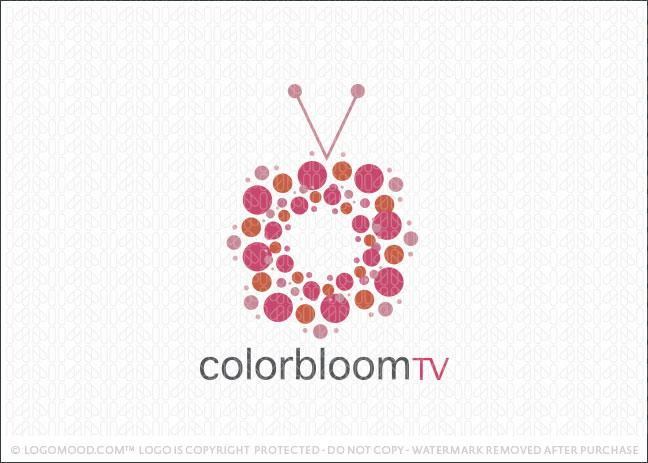 Color Bloom TV Logo For Sale