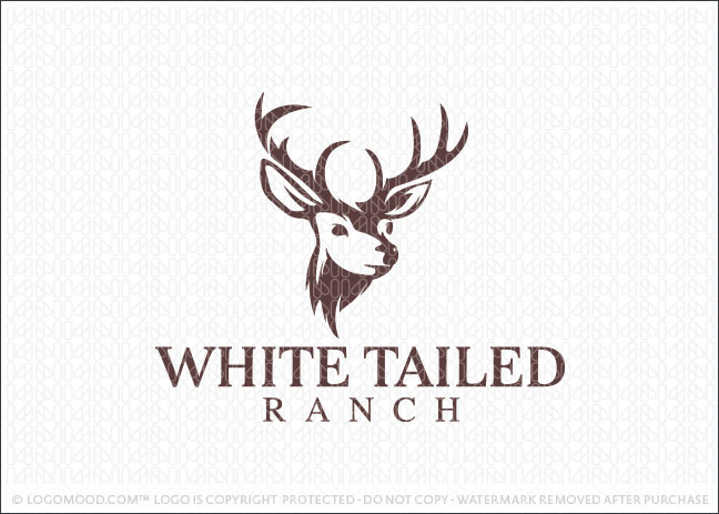 Tailed Ranch Logo For Sale