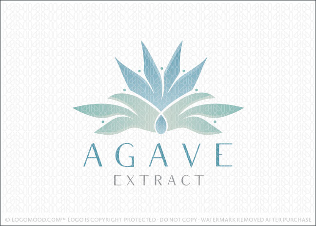 Agave Extract Natural Plant Business Logo For Sale