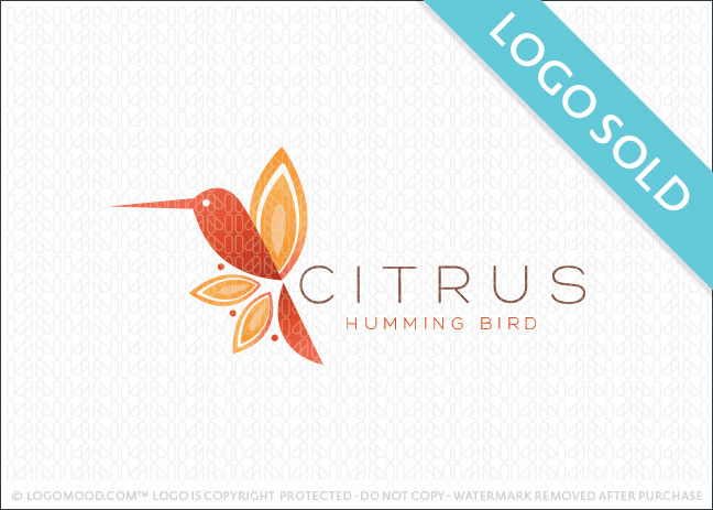 Citrus Hummingbird Logo Sold
