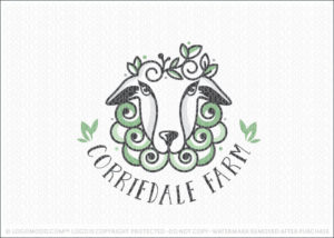 Corriedale Sheep Farm
