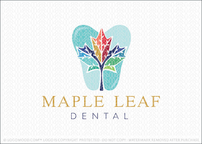 Maple Leaf Dental Dentist Practice Logo For Sale