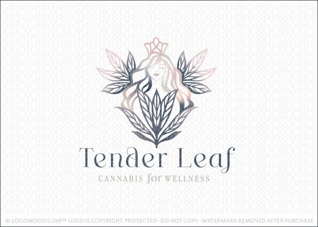 Tender Leaf Cannabis